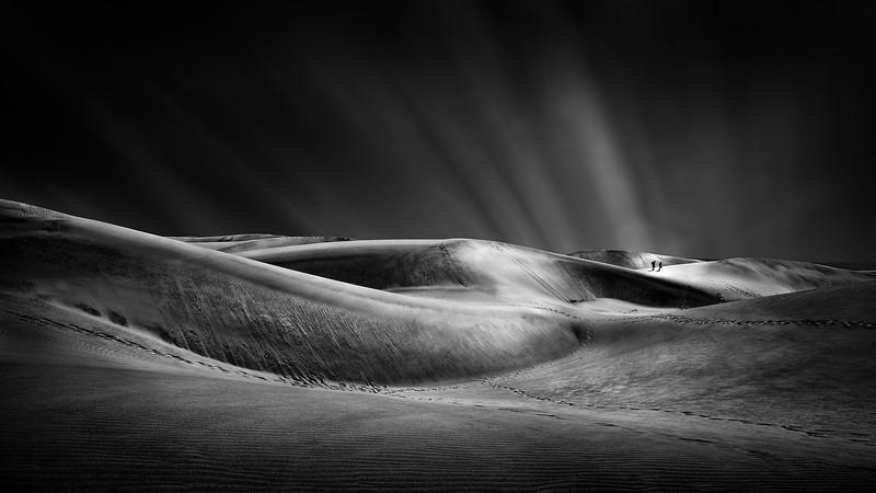 Dune Path II