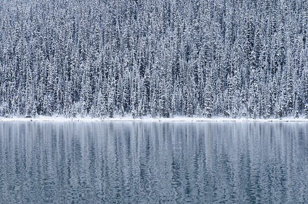 REFLECTIONS ON FIRST SNOW