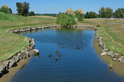 Cash & Carry Golf Tournament 091014-