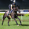 Singapore 15th May Trackwork