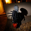 Robert Mares, 11, dressed as Alien, walks away from a house on San Felipe Circle while trick or treating for Halloween in Santa Fe on Monday, October 31, 2016. Luis Sanchez Saturno/The New Mexican