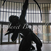 Statue silhouette at Smithsonian's National Museum of the American Indian – a color image