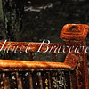 Rusted handrail of abandoned Forest Haven Asylum - a color image