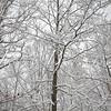 Blizzard hits Virginia- a color image