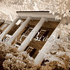 Colonial brick house in Fredericksburg - a false-color infrared image
