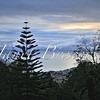 Monte view of Funchal, Madeira at dusk - a color image
