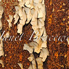 Rust and peeling paint abstract of abandoned Forest Haven Asylum - a color image
