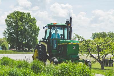 farm-31