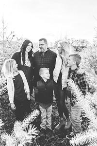family-32
