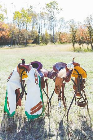 saddles-1