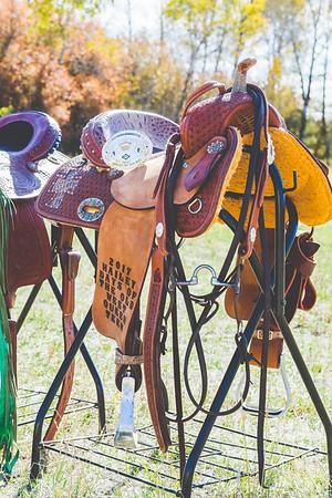 saddles-4