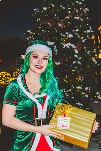 Elf-25