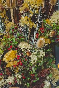 Fall time-2