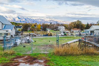 farm yard-1