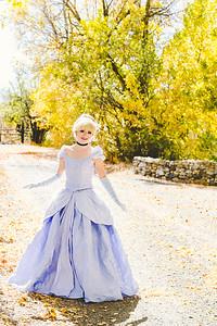 Cinderella-41