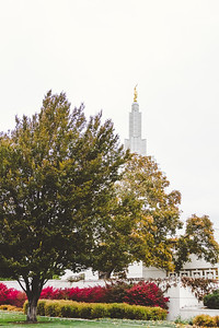 Temple-31