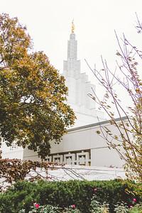 Temple-25