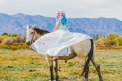Unicorn Princess-44