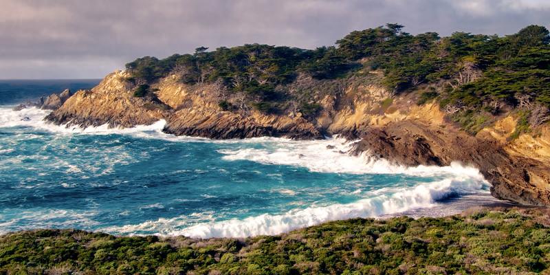 Point Lobos Cypress Grove Vista