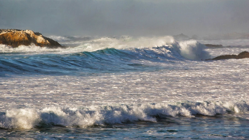 Bird Rock Waves