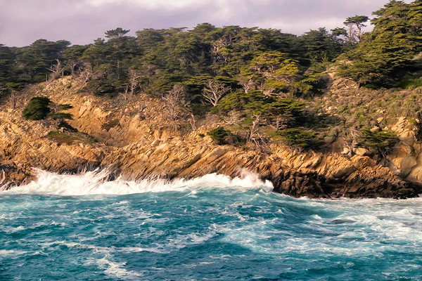 Point Lobos Vista