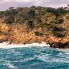 Point Lobos Vista