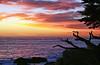 Pescadero Point Sunset