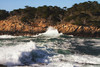 Point Lobos Breakers