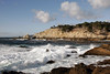 Point Lobos Afternoon