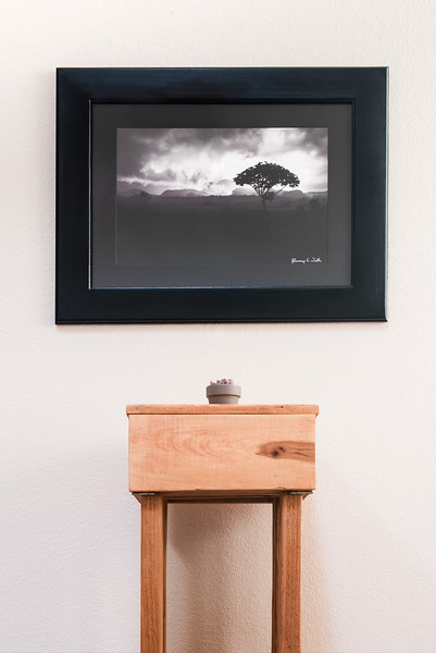 12x18 Image with Mat and Frame $475