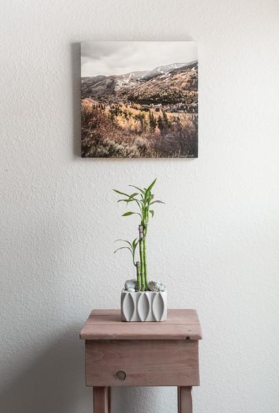 16x16 Canvas $100
