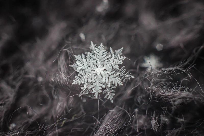Layers - Snowflake