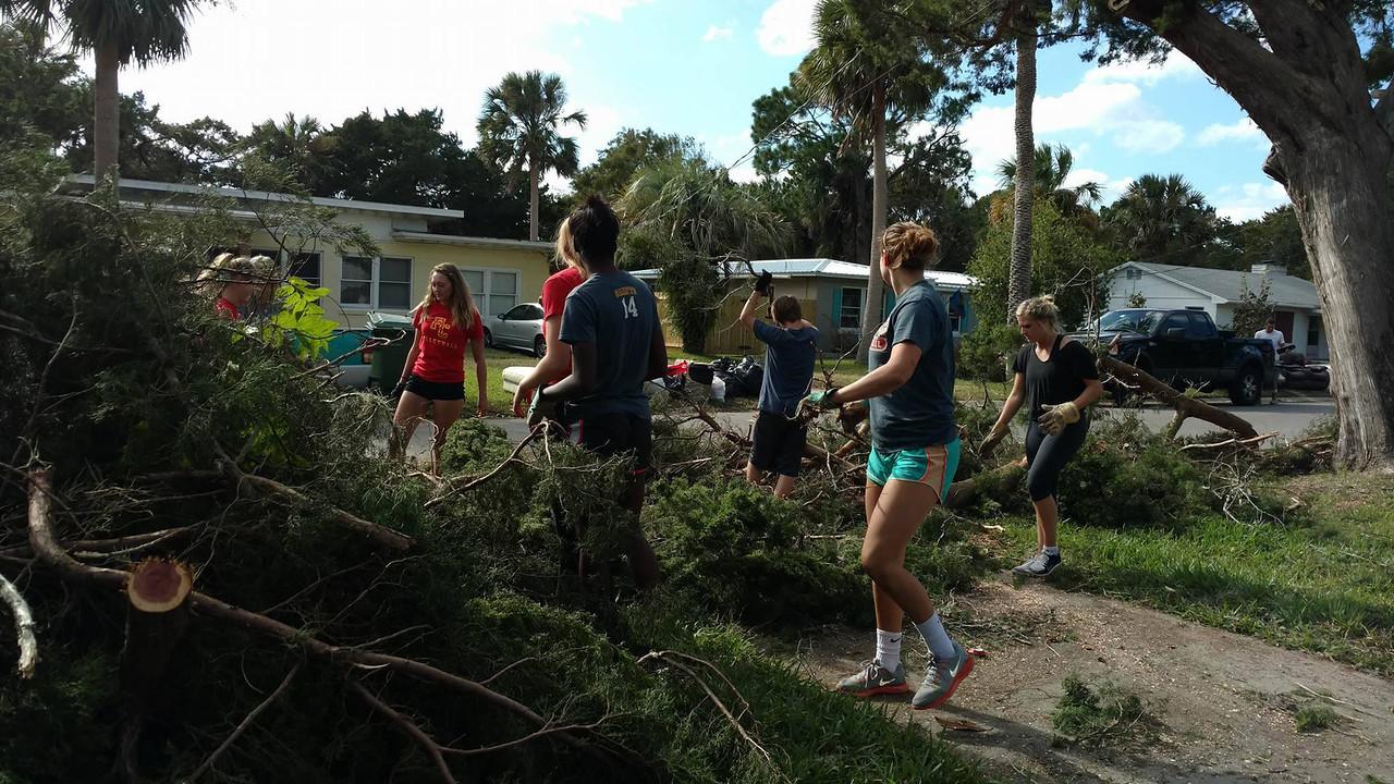 Hurricane Matthew clean up
