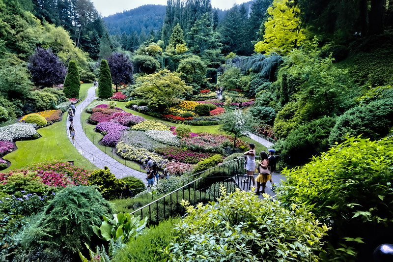 Descend To The Sunken Garden and See