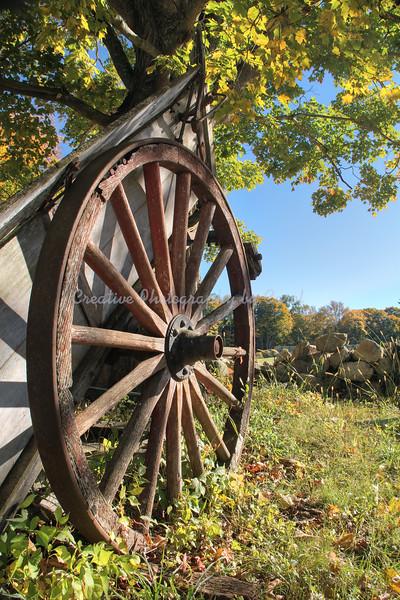 Wagon Wheel - print