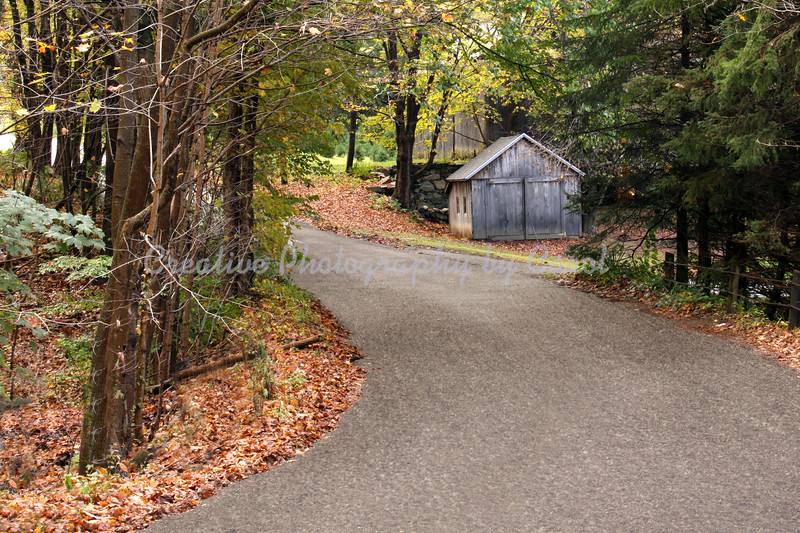 Country Road - Print