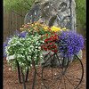 Portable Garden 16x20