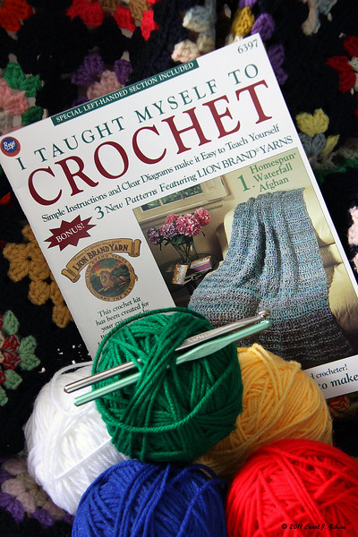 Day 8 - I taught myself to Crochet.... NOT!!! I just photographed the book.