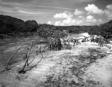 Crab Cay Cut, Exuma, Bahamas