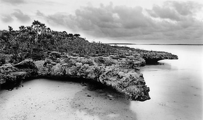 Crocodile rock, South Side, Great Exuma, Bahamas