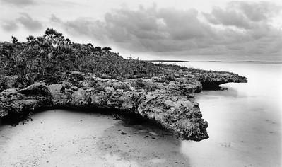 Crocodile rock, South Side, Great Exuma, Bahamas
