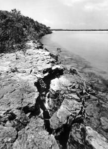 Broken shoreline, Moriah Harbour, Little Exuma, Bahamas