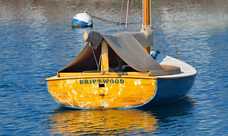 Driftwood, Nantucket Harbour