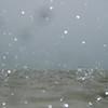 Tiamo Rain