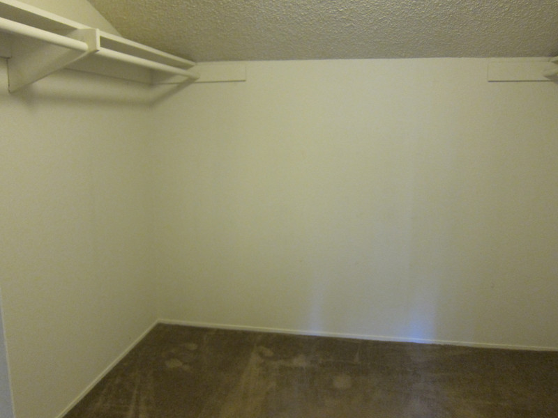 Inside the large walk-in closet...