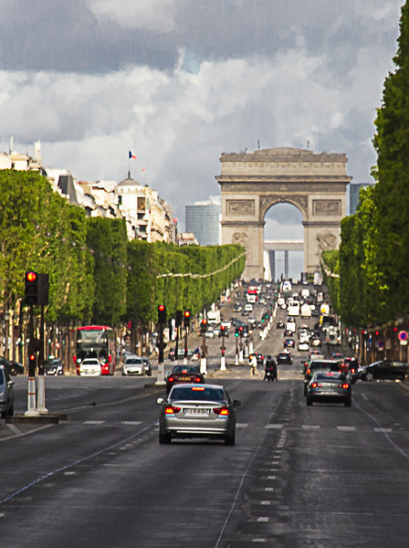 The Trees of the Champs-Élysées<br /> The trees of the Champs-Élysées were much taller than expected and were all manicured to allow a perfect view down the street.