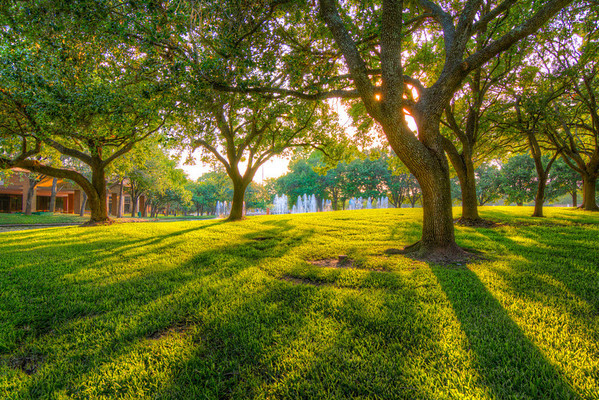 A Nice Place for a Picnic<br /> When was the last time you went on a picnic? Picnics are one of those occasions we all think of fondly, but rarely do. So many things have to fall into place to pull it off.