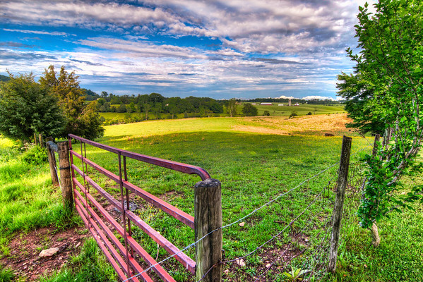 The Red Gate<br /> This red gate opens into a Virginia pasture where you can find a few head of cattle and occasionally a deer or on a rare occasion, a bear.