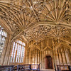The Divinity School at the Bodleian Library<br /> Located in the center of Oxford, you can find the Divinity School at the Bodleian Library. Built in 1488 for the teaching of theology, it has an elaborately vaulted ceiling and its 455 carved bosses, it is a masterpiece of English Gothic architecture.<br /> <br /> Look closely and you can find it occasionally in television shows and movies, including three Harry Potter movies.