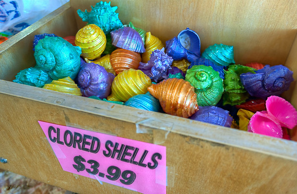 """Clored Shells<br /> I'm not sure where these """"clored"""" shells come from, but they add to the local flavor and increase the visual bounty of our seaside shopping adventure."""